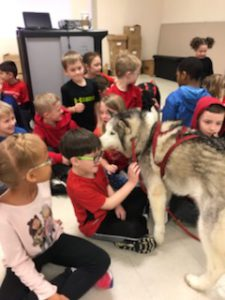 students pet sled dog in their classroom